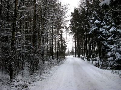 Vintertid...