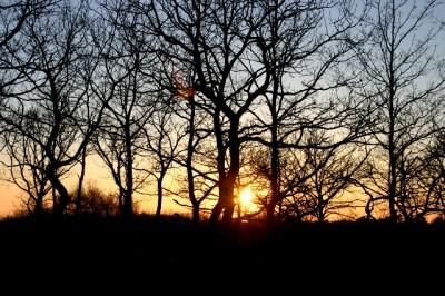Det är solen som går upp...