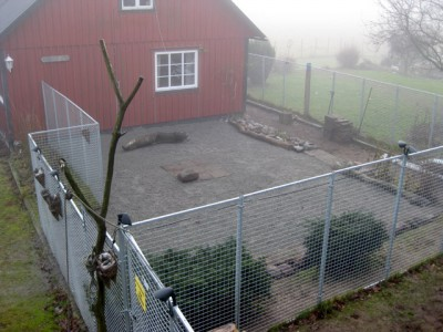 Hundgård Rastgård Inhägnad Hundar Schäfer Bur