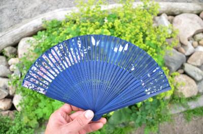 Kinesisk solfjäder