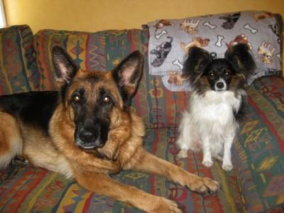 Debbie och Pepzi