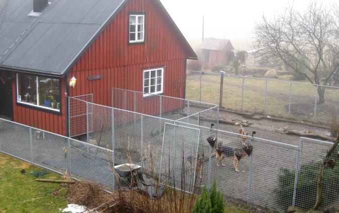 2010-03-img_2523